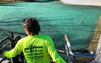 Key to effective hydroseeding